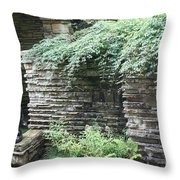 Frank Lloyd Wright Fw V Throw Pillow