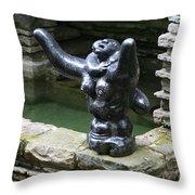 Frank Lloyd Wright Iv Throw Pillow