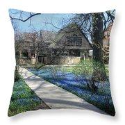 Frank Lloyd Wright Studio Throw Pillow