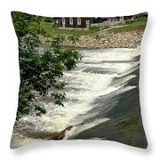 Frankenmuth Lager Mill II Throw Pillow