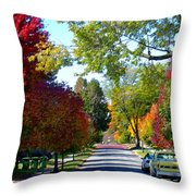 Franklin Street Liberty Throw Pillow