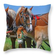 Franklinville Plowfest 1417b Throw Pillow