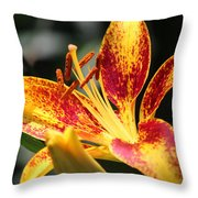 Frans Hals Daylily Hybrid Throw Pillow