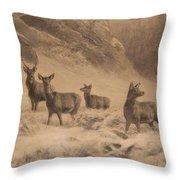 Franz Xaver Von Pausinger Rotwild Im Winter Throw Pillow