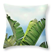 Frayed Palm Fronds Against Blue Sky Throw Pillow
