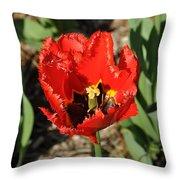 Frayed Tulip Throw Pillow