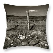 Fred Fencestone Throw Pillow