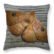 Frederica Throw Pillow