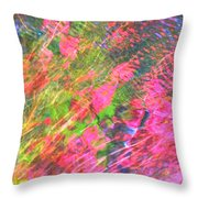 Free And Wild As The Wind Throw Pillow