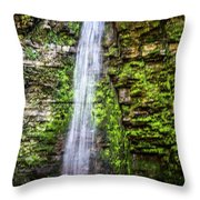 Free Fall Throw Pillow by William Norton