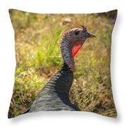 Free Range Turkey Throw Pillow