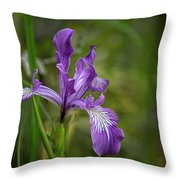 Free Ranging Wild Iris Throw Pillow