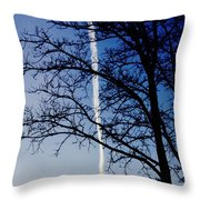 Free To Fly Throw Pillow