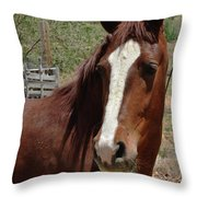 Freedom Horse Throw Pillow