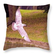 Freedom Is Priceless Throw Pillow