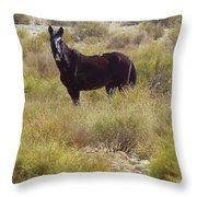 Freedom Shows Throw Pillow