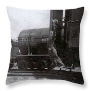 Freedom To Roam Throw Pillow