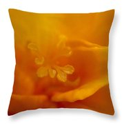 Freesia IIi Throw Pillow