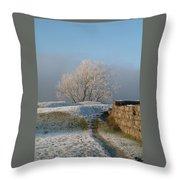 Freezing Tree Throw Pillow