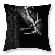 Freisian Shadow Throw Pillow