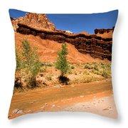 Fremont River Castle Throw Pillow