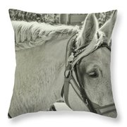 French Braided Gray Throw Pillow