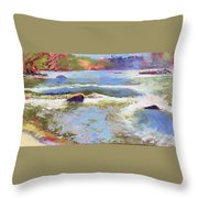 French Broad Rver Overflowing Throw Pillow