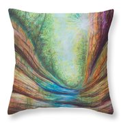 French Canyon At Starved Rock State Park Throw Pillow