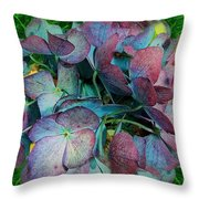 French Hydrangea Rainbow Throw Pillow