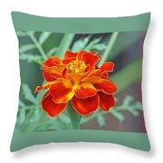 French Marigold Throw Pillow
