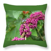 French Mulberry Throw Pillow