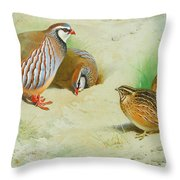 French Partridge By Thorburn Throw Pillow