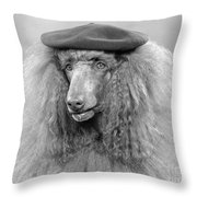French Poodle Wearing Beret, C.1970s Throw Pillow