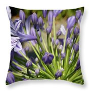 French Quarter Floral Throw Pillow