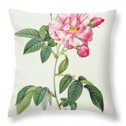 French Rose Throw Pillow by Pierre Joseph Redoute