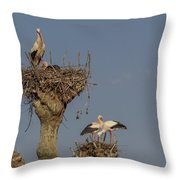 French Storks 01 Throw Pillow