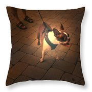 Frenchy Throw Pillow