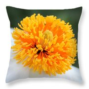 Frenzy Of Stamens Throw Pillow