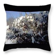 Fresc Snow Throw Pillow