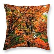 Fresco Autumn Diptych Left Throw Pillow