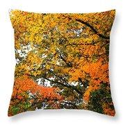 Fresco Autumn Diptych Right Throw Pillow