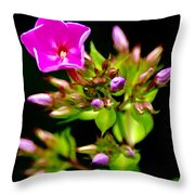 Fresh And Happy 2 Throw Pillow