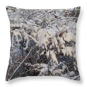 Fresh Coat Of Snow Throw Pillow