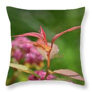Fresh Colors Of Summer Throw Pillow