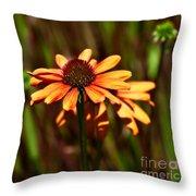 Fresh Echinachea Throw Pillow