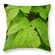 Fresh English Golden Hop Throw Pillow