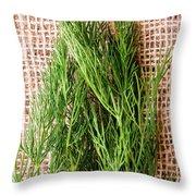 Fresh Green Dill On Jute Bag Throw Pillow