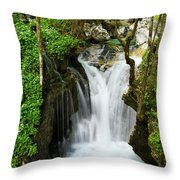 Fresh Green Forest In Spring At Lepenica River Gorge At Sunikov  Throw Pillow