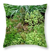 Fresh Greens Throw Pillow