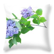 Lilac Twig Throw Pillow
